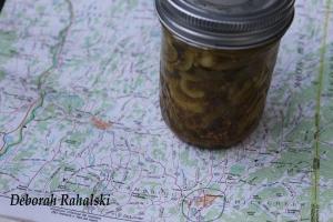 pickles72dpi