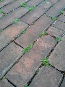 BricksEdit