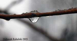 waterdropEdit