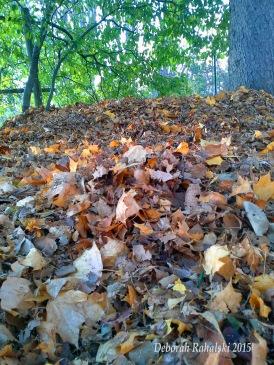 leafpileEdit